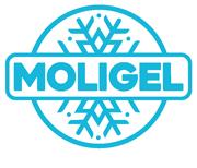 Moligel Srl